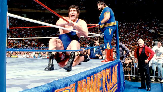 Off The Top Rope: WWF SummerSlam 1989