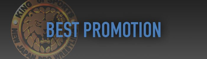 VoicesofWrestling.com - Best Promotion