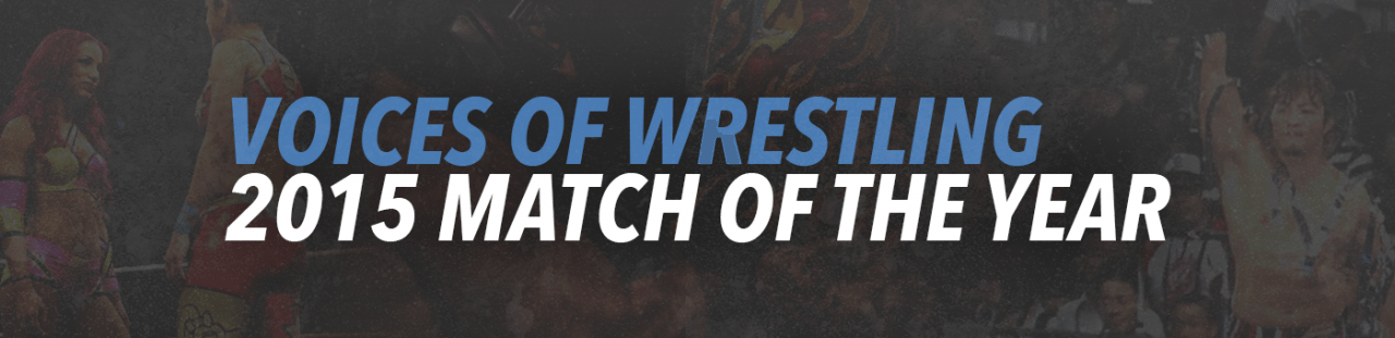 VoicesofWrestling.com - Voices of Wrestling 2015 Match of the Year