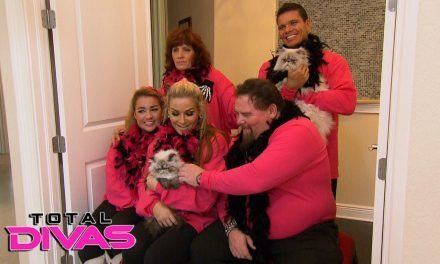 "Total Divas (Season 5 – Episode 9 – ""Rocky Road to Recovery"") Review"