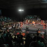 Will the Real Ring of Honor Please Stand Up?