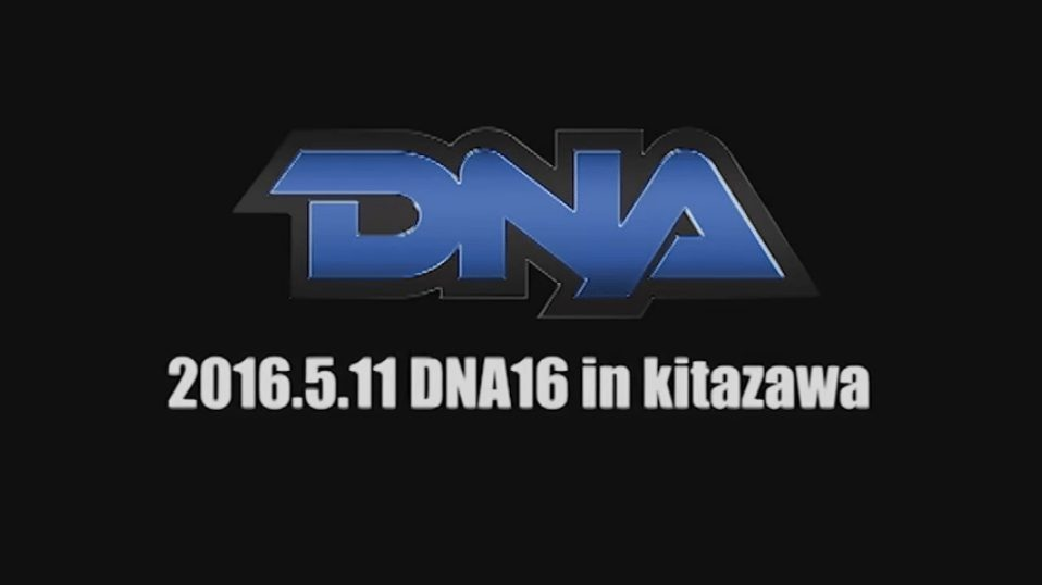 DDT DNA 16 Results & Review