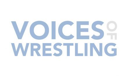 WWF Survivor Series 1990 (Sterling Eyes Podcast)