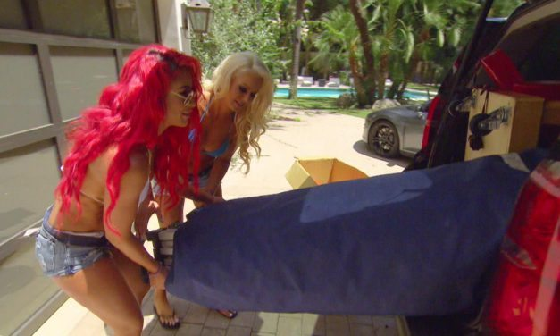 """Total Divas (S6 E12 – """"Feel the Glow"""") Review"""