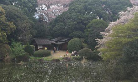 Nihon ni Ikimasu: Yes, You Can Go to Japan (Introduction & Cost-Saving Tips)