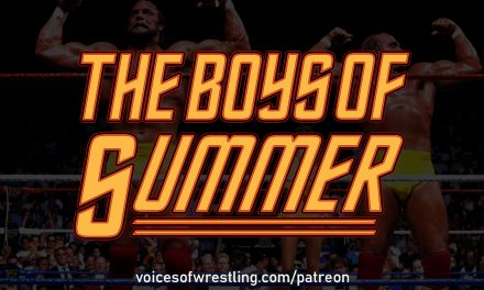 The Boys of Summer (1988): Mega Powers vs. Mega Bucks