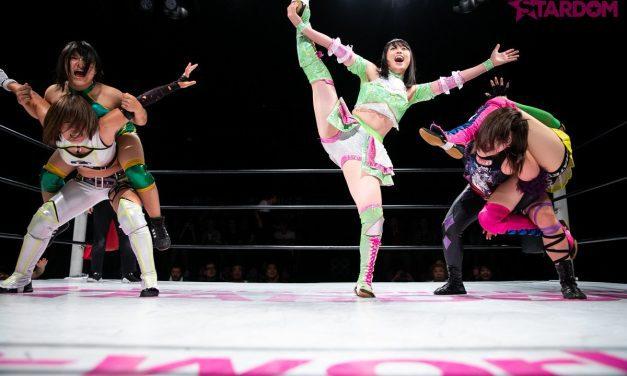 Hustlers and Heatseekers: Japan's Next Wrestling Stars (Part 2)