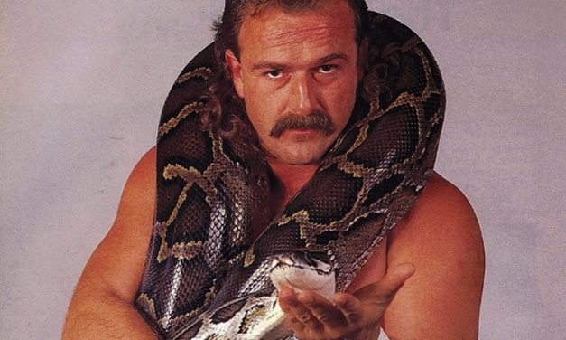 You're a Piece of Flesh: On Jake Roberts' Powerful 1987 WWF Promo